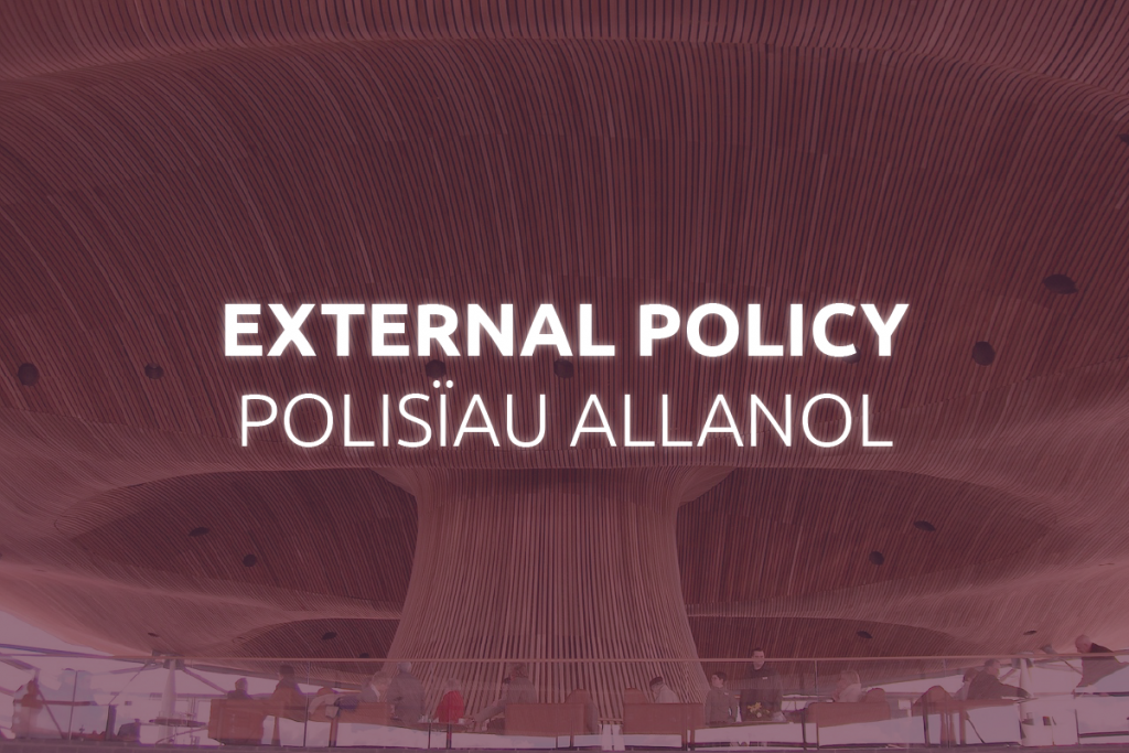 External Policy Frameworks