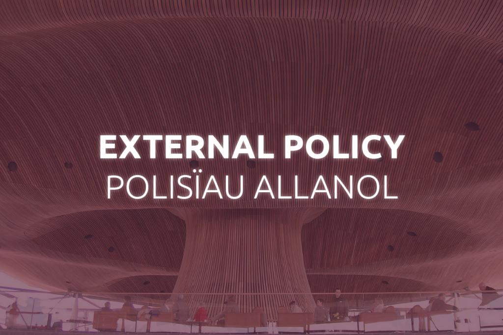 External Policy Frameworks
