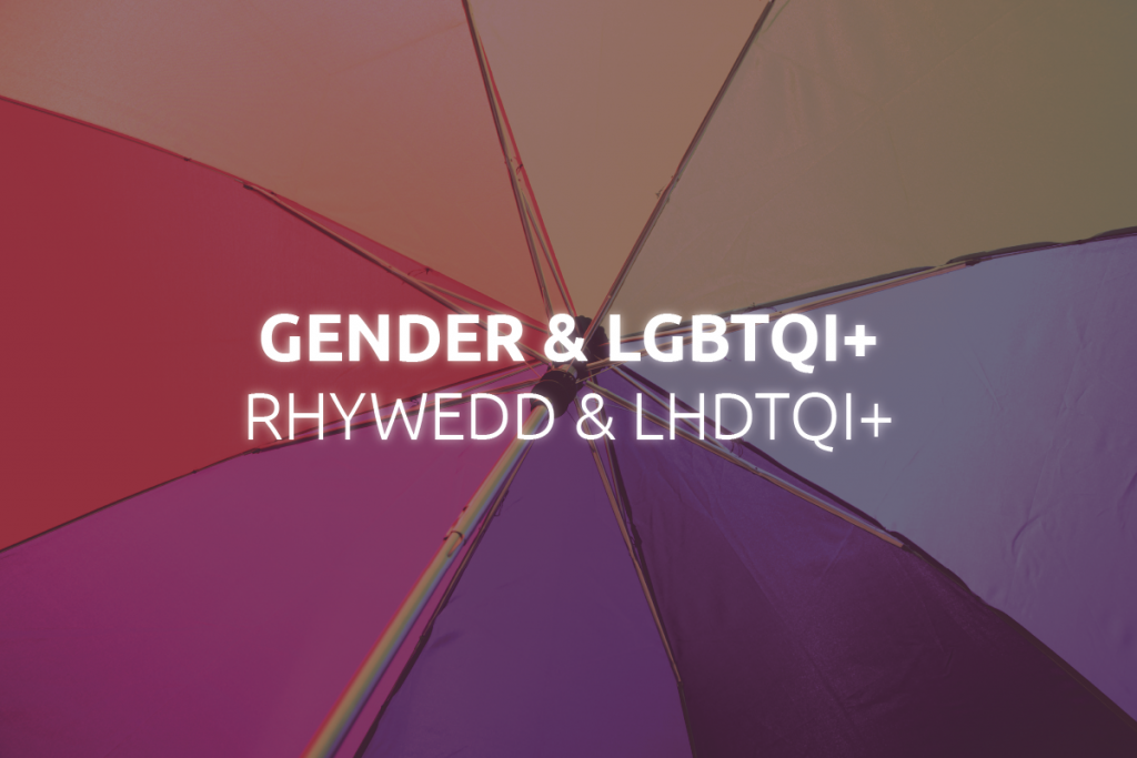 Gender & LGBTQI+