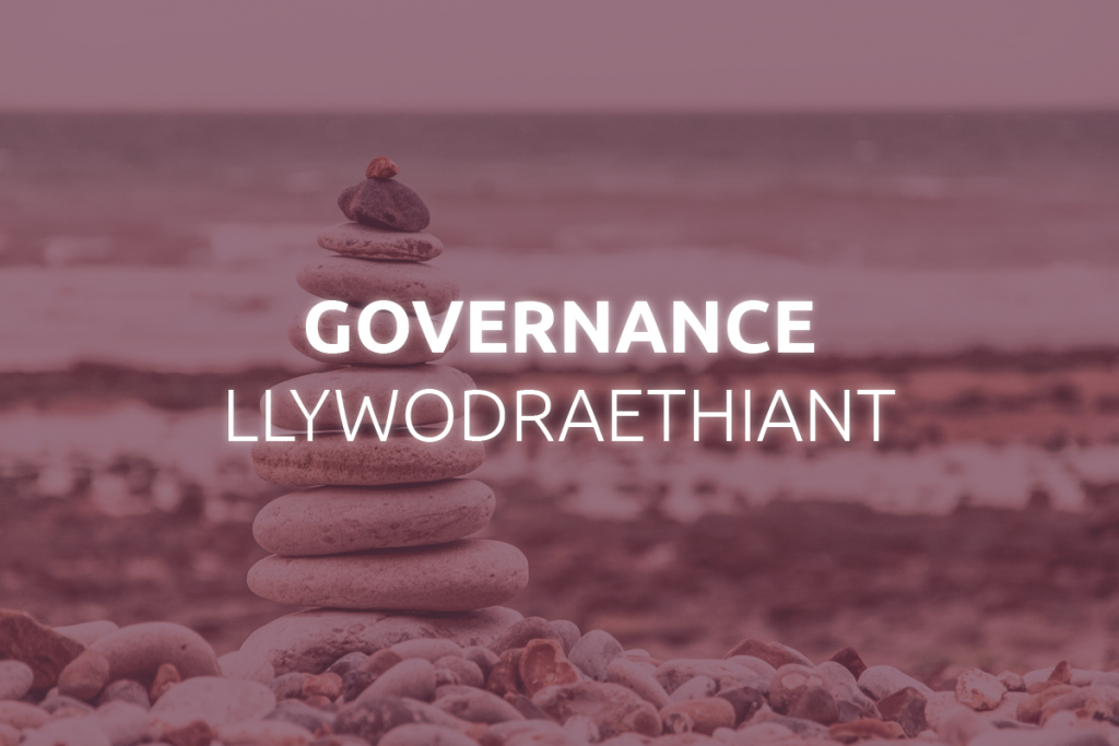 Governance and Organisation